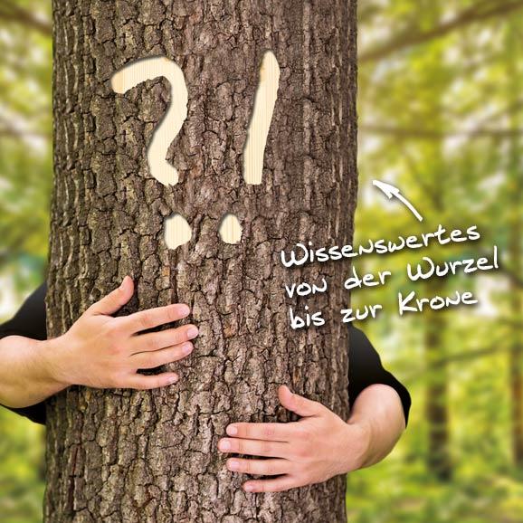 Holzland Köster: Baumwissen