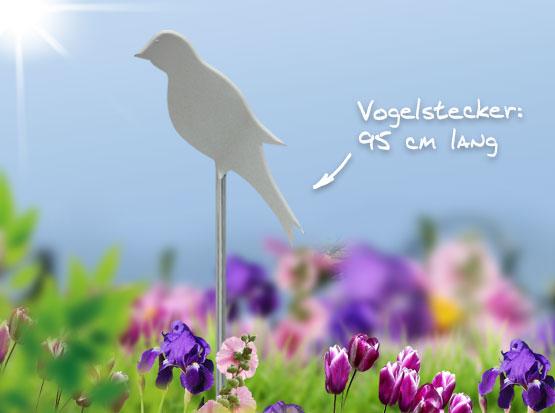 Vogelstecker Edelstahl, Holzland Köster in Emmerke